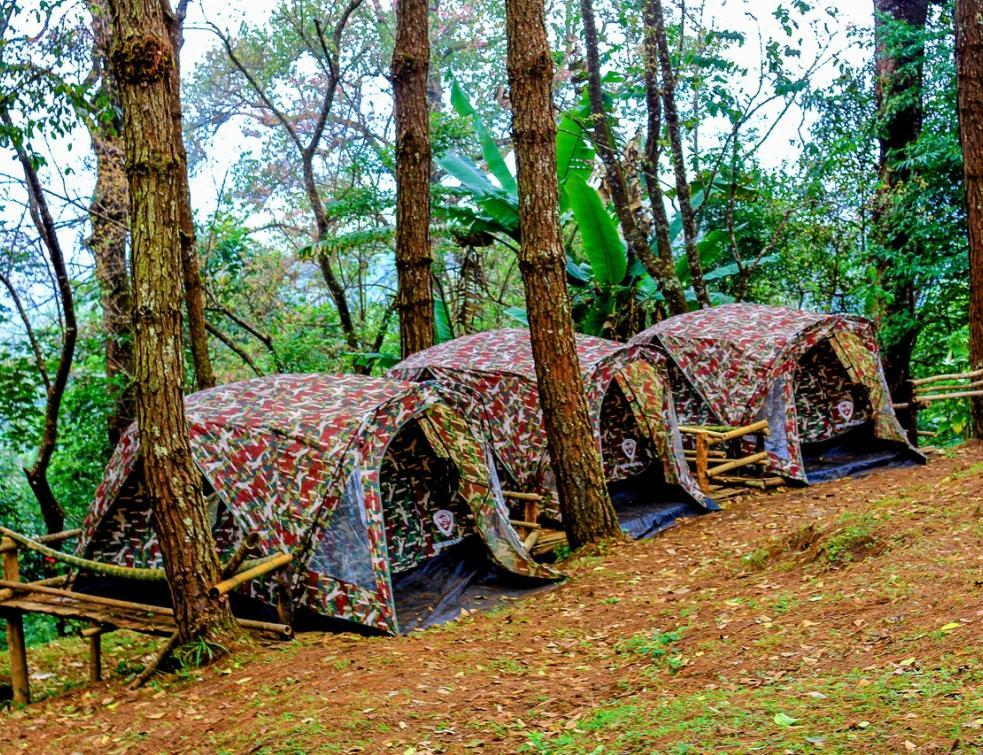 Le camping, un investissement immobilier pas comme les autres