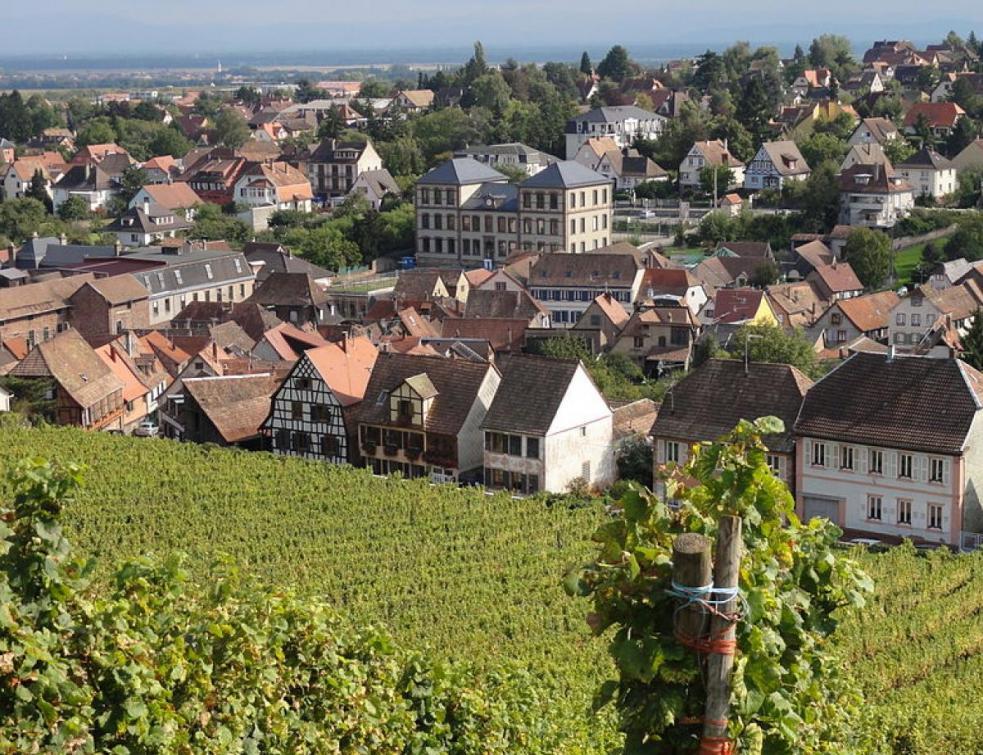 Alsace: manifestation contre un projet d'entrepôt d'Amazon