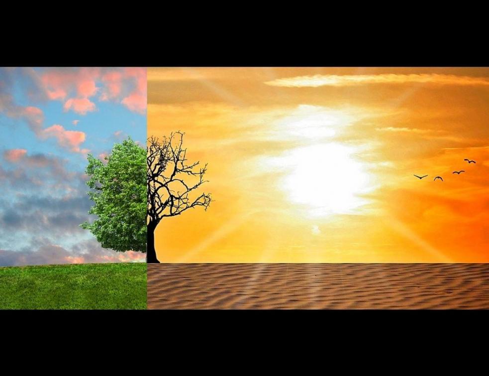 Convention climat : bientôt les premières annonces réglementaires