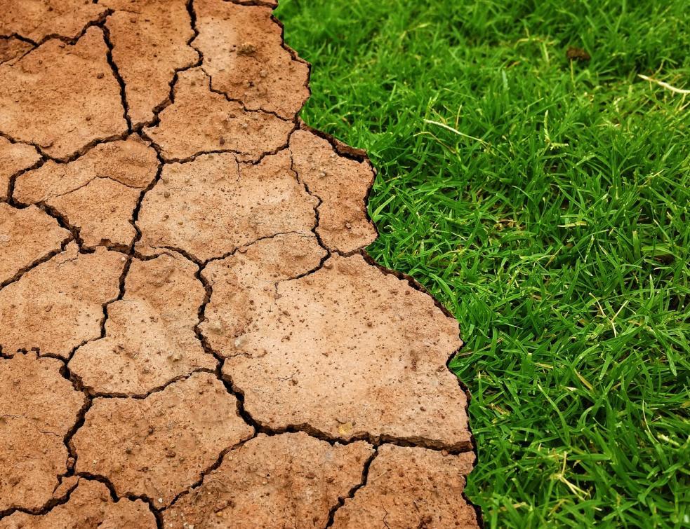 Le Haut conseil pour le climat préconise un plan de relance compatible avec la neutralité carbone