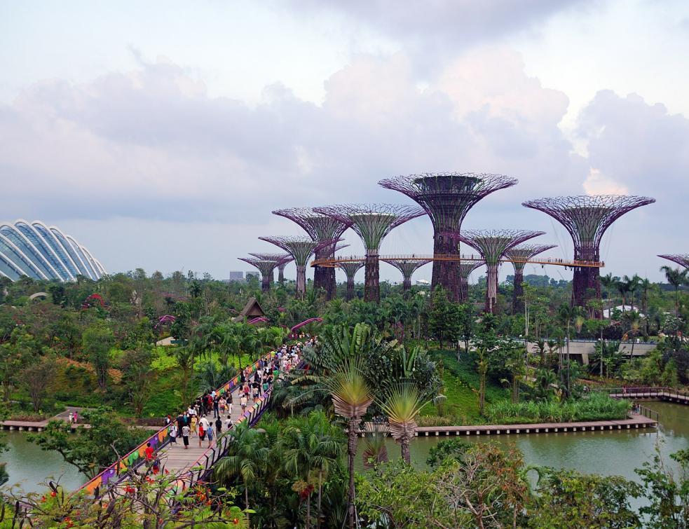 Les sites végétalisés fleurissent dans les grandes villes du monde entier